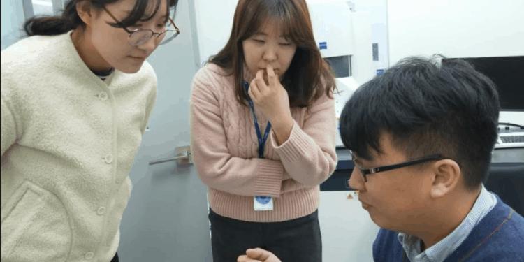 2018 Technoorg Linda 離子研磨機SEMPREP2韓國教育訓練-1