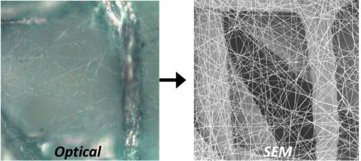 campared_with_optical_microscope_and_SEM_fiber_images